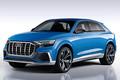奥迪新增两款全新SUV 市场将填两名猛将