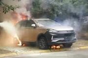 《这是真的吗?》新能源车比燃油车更爱起火
